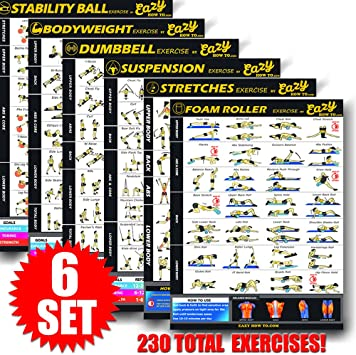 Eazy How To póster para ejercicios con cables de suspensión, 51 x 73 cm, tonificación, musculación, alta resistencia, premium, 6 Pack, Premium: Amazon.es: Juguetes y juegos
