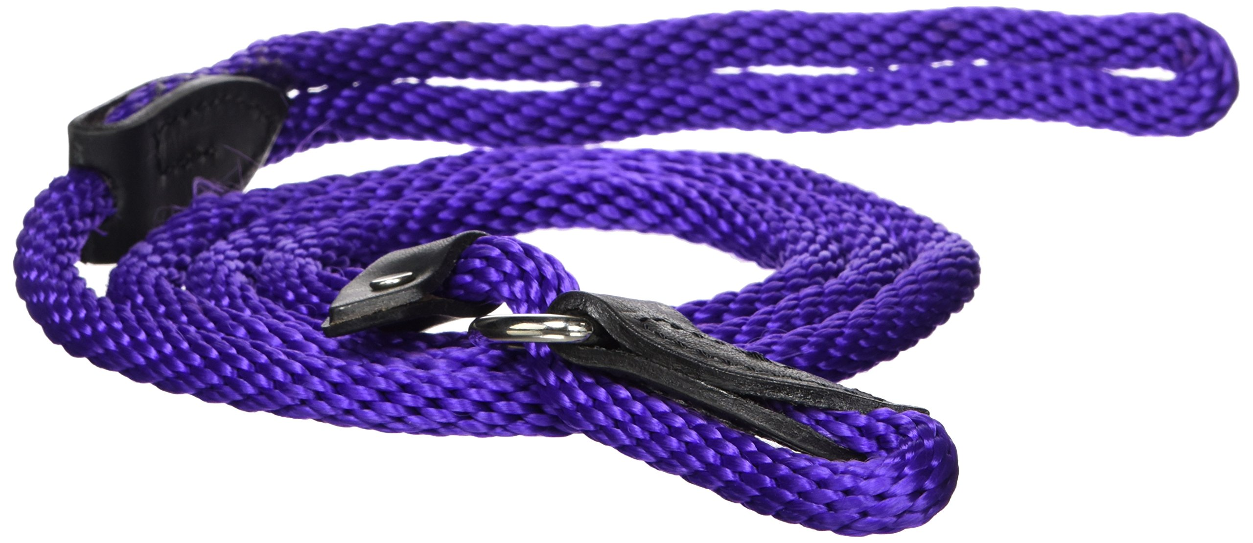 Hamilton 3/8'' x 6' London Quick Lead and Choke Collar for Dogs, Purple