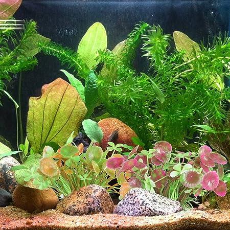mihounion 2 piezas Artificial Agua Plantas Fish Tank plástico Hierba con base de cerámica Vivid acuático acuario adornos para de cristal fondo decoración: ...