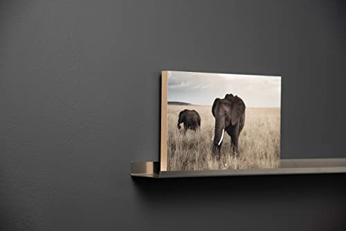 WELLAND Photo Ledge Floating Picture Ledge, Display Wall Shelf, 48-inch, White