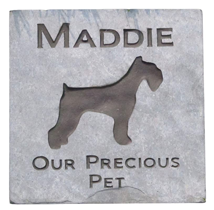 pet and best friend realistic memorial keepsake for your dog Personalized Gray Schnauzer urn