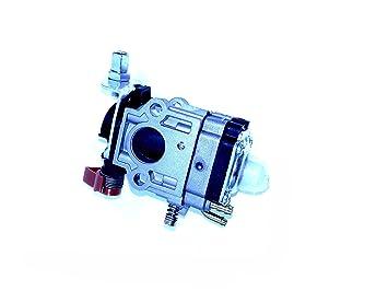 Carburador para desbrozadora Oleo Mac y Efco 453, 753/755: Amazon.es: Jardín