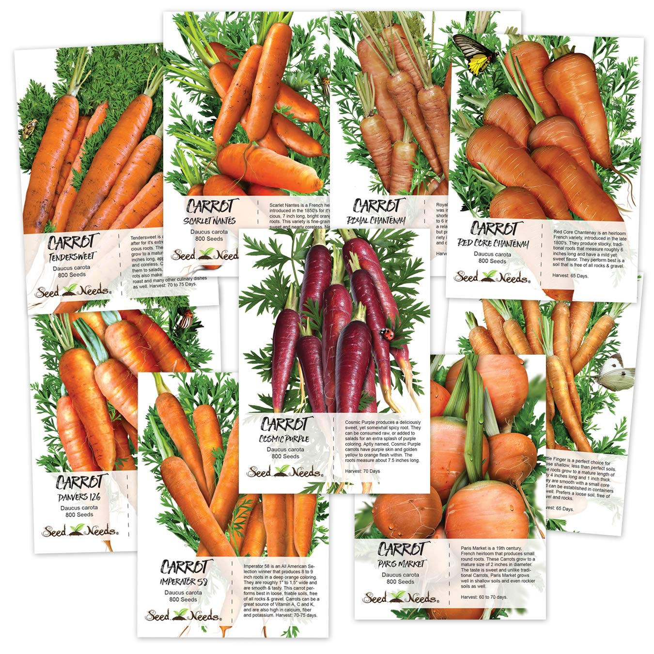 Carrot Lovers Seed Collection (9 Individual Seed Packets) Non-GMO Seeds by Seed Needs by Seed Needs