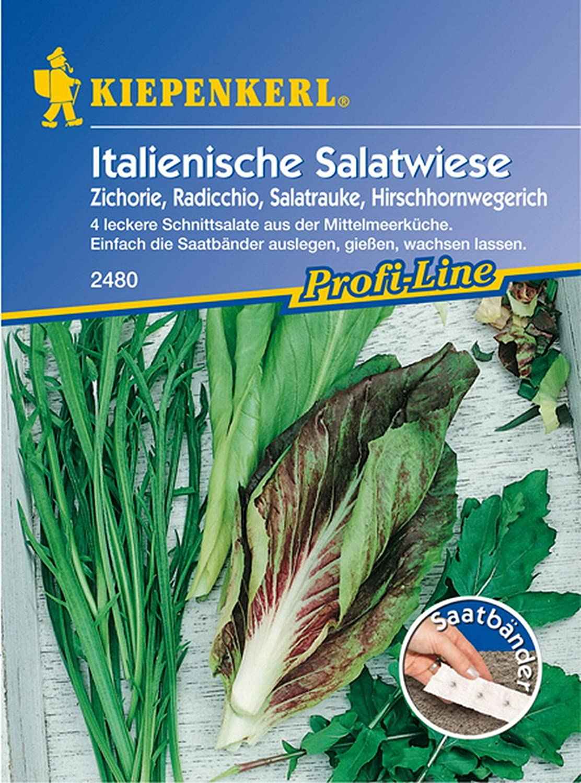 Schnittsalat Salatwiese Saatband,4 x 2,5