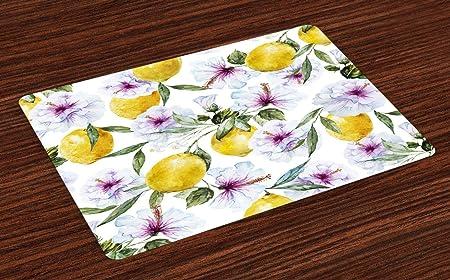 Colchonetas de primavera, Esencia de limones de flores Refrescante Agricultura Cosecha Aroma Arte de acuarela orgánica, Manteles de tela lavables para comedor Decoración de mesa de cocina, juego de 4: Amazon.es: Hogar