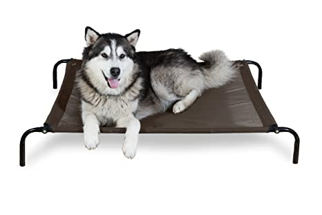 Amazon.com   FurHaven Pet Dog Cot  cadb5441f5d