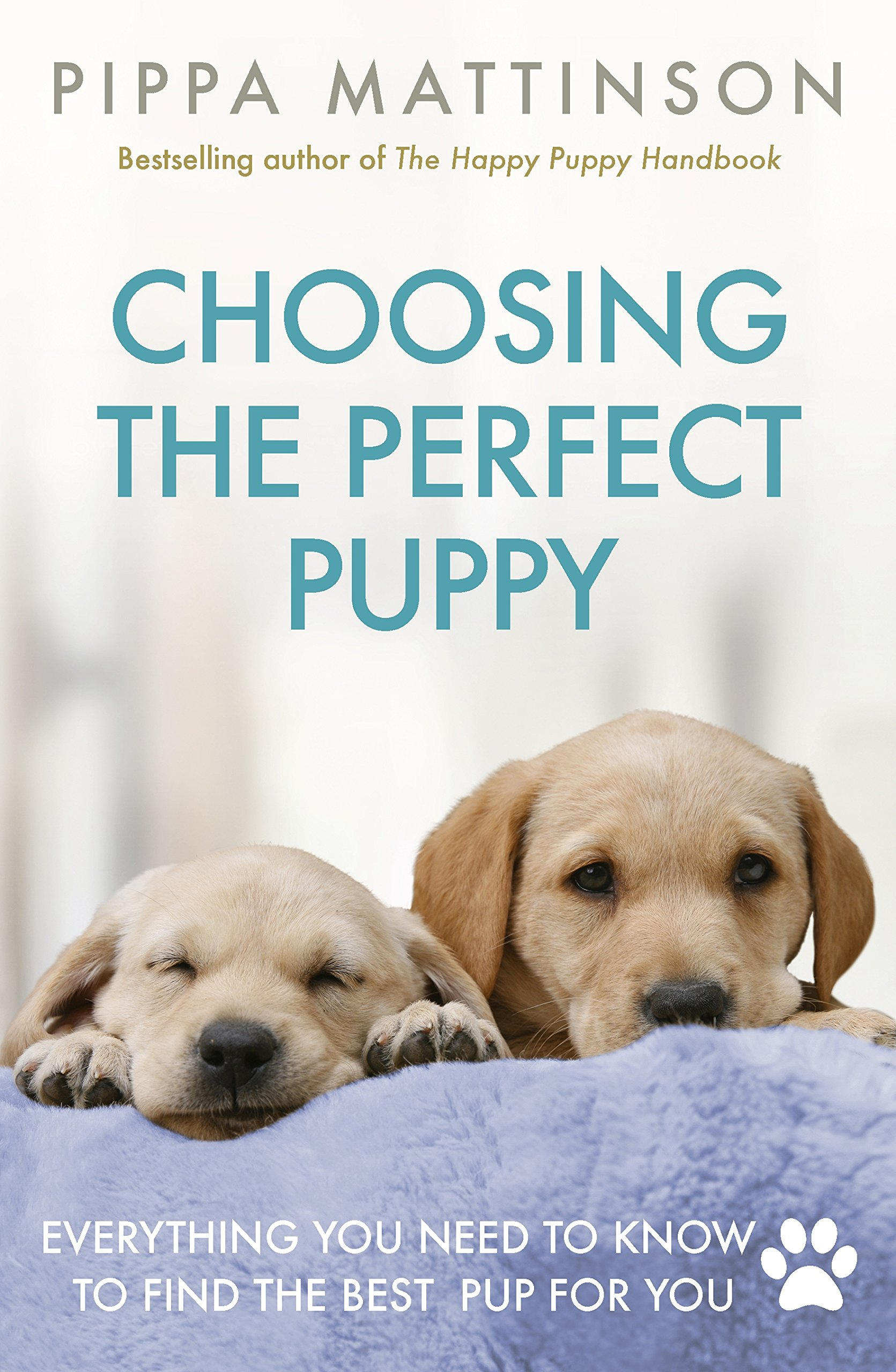 Choosing-the-Perfect-Puppy