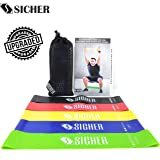 SICHER™ Resistance Band/Mini Loop Bands,12 Inch Length with Physical Booklet with 42 Exercises for Strength Training,Core Training,Lower Body Training, Multicolor,Pack of 5.