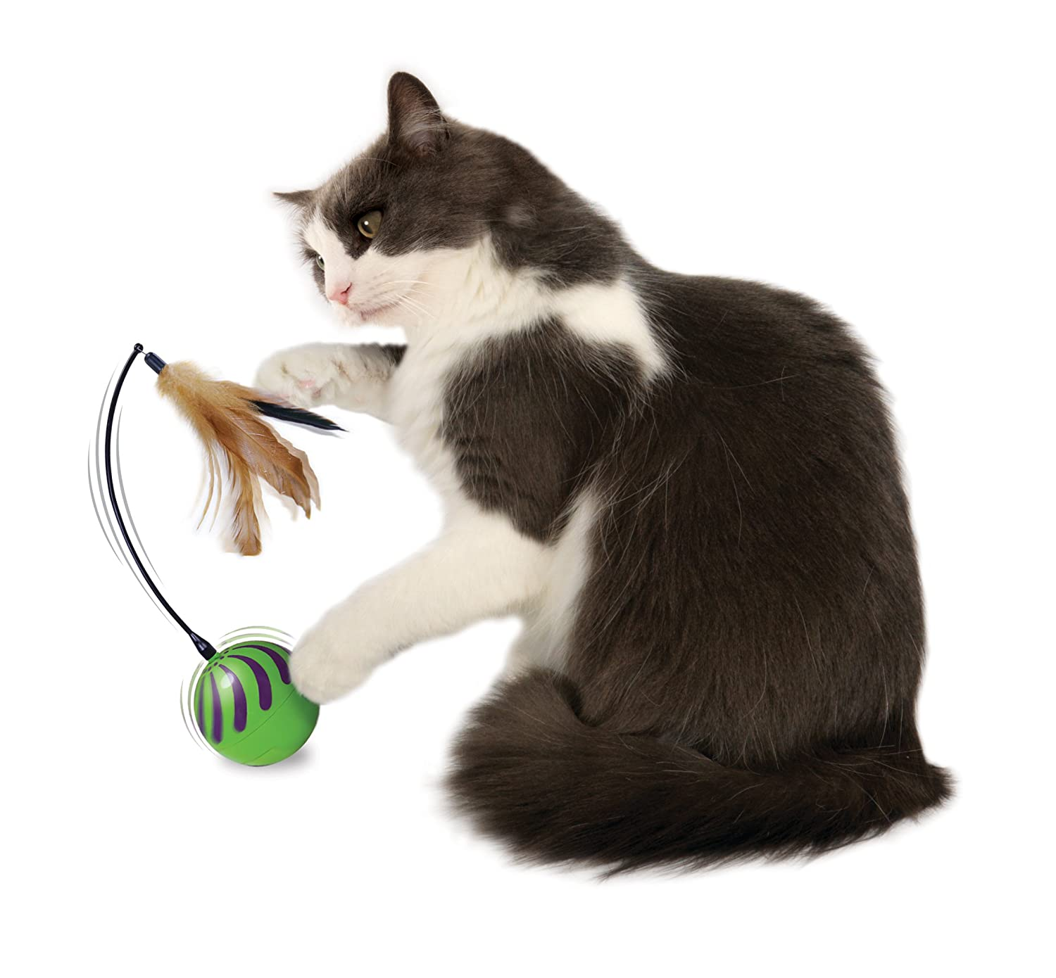 Amazon SmartyKat Feather Whirl Electronic Motion Cat Toy As