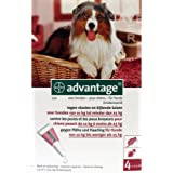 Advantage 250 hond 4 Pipetten von 2.5 ml