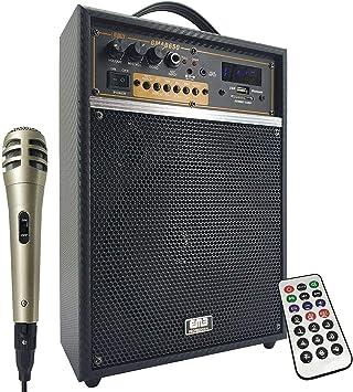 EMB Pro Mini Guitar Amplifier
