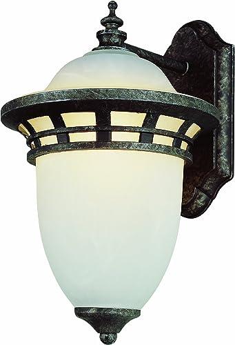 Trans Globe Lighting PL-5111 AP Antique Pewter Outdoor Wall Light