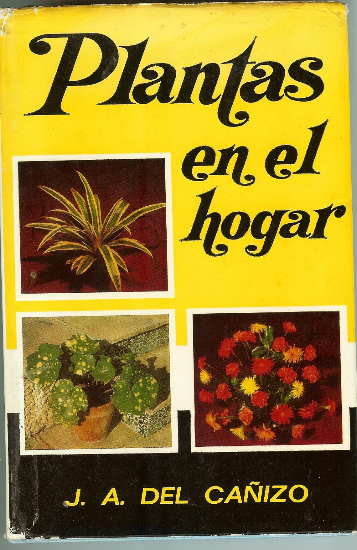 Plantas En El Hogar Plantas De Interiors Plantas En