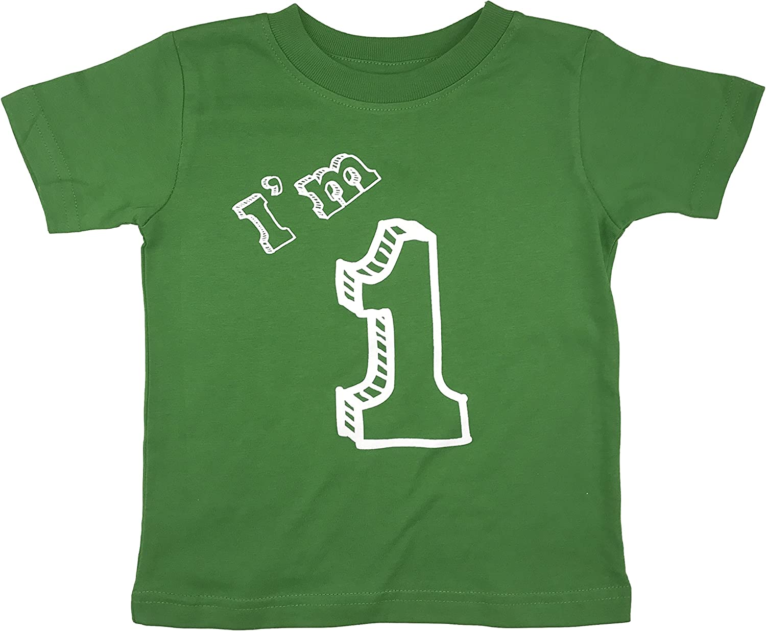 One Year Old Birthday Party Im 1 T-Shirt