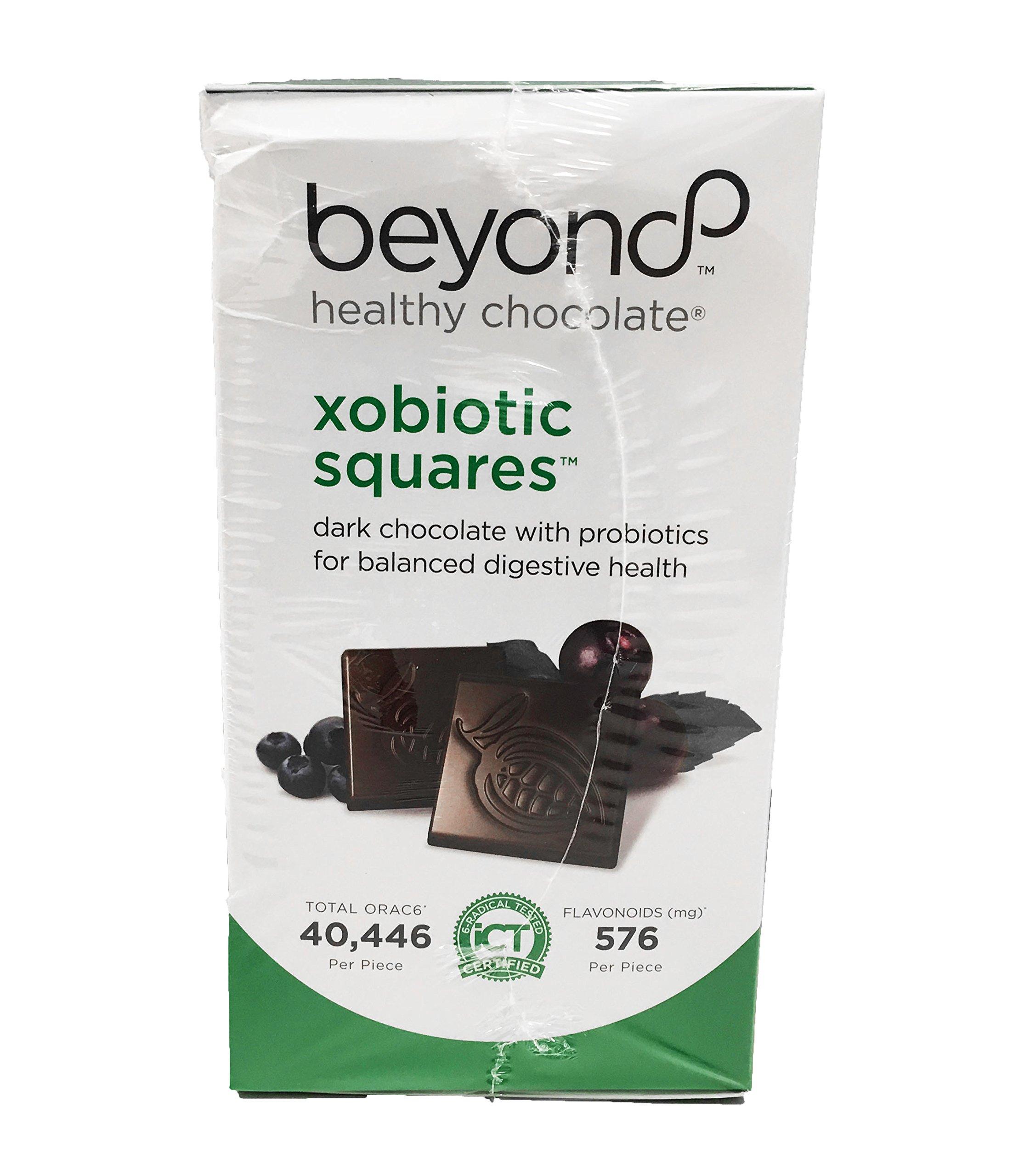 Beyond Healthy Chocolate Xobiotic Squares 120 Pieces 1 lb