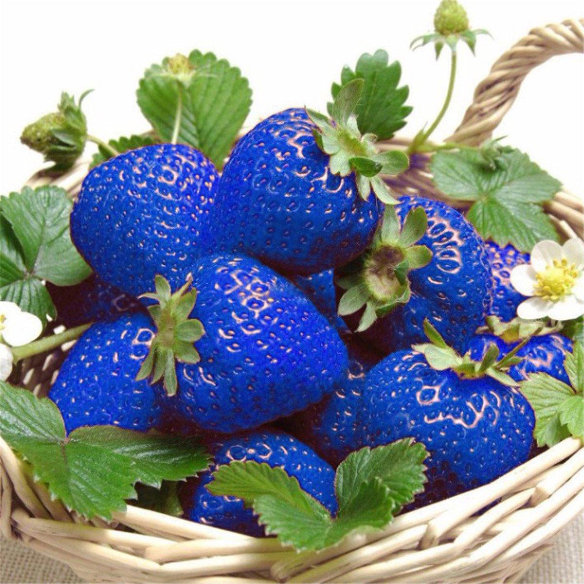 Strawberry Fresh Fruits Wall Clock Rare! New Wall Clock Sweet Red Strawberries