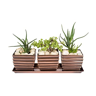 H Potter Herb Succulent Planter Plant Pots Window Sill with Tray Outdoor Indoor Flower Container for Home Patio Garden Deck Balcony Antique Copper Finish: Garden & Outdoor