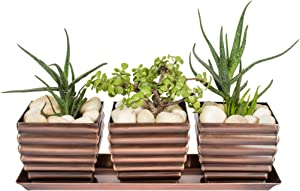 H Potter Herb Succulent Planter Plant Pots Window Sill with Tray Outdoor Indoor Flower Container for Home Patio Garden Deck Balcony Antique Copper Finish