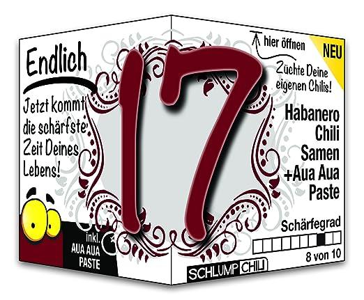 Geburtstagsgeschenk zum 17