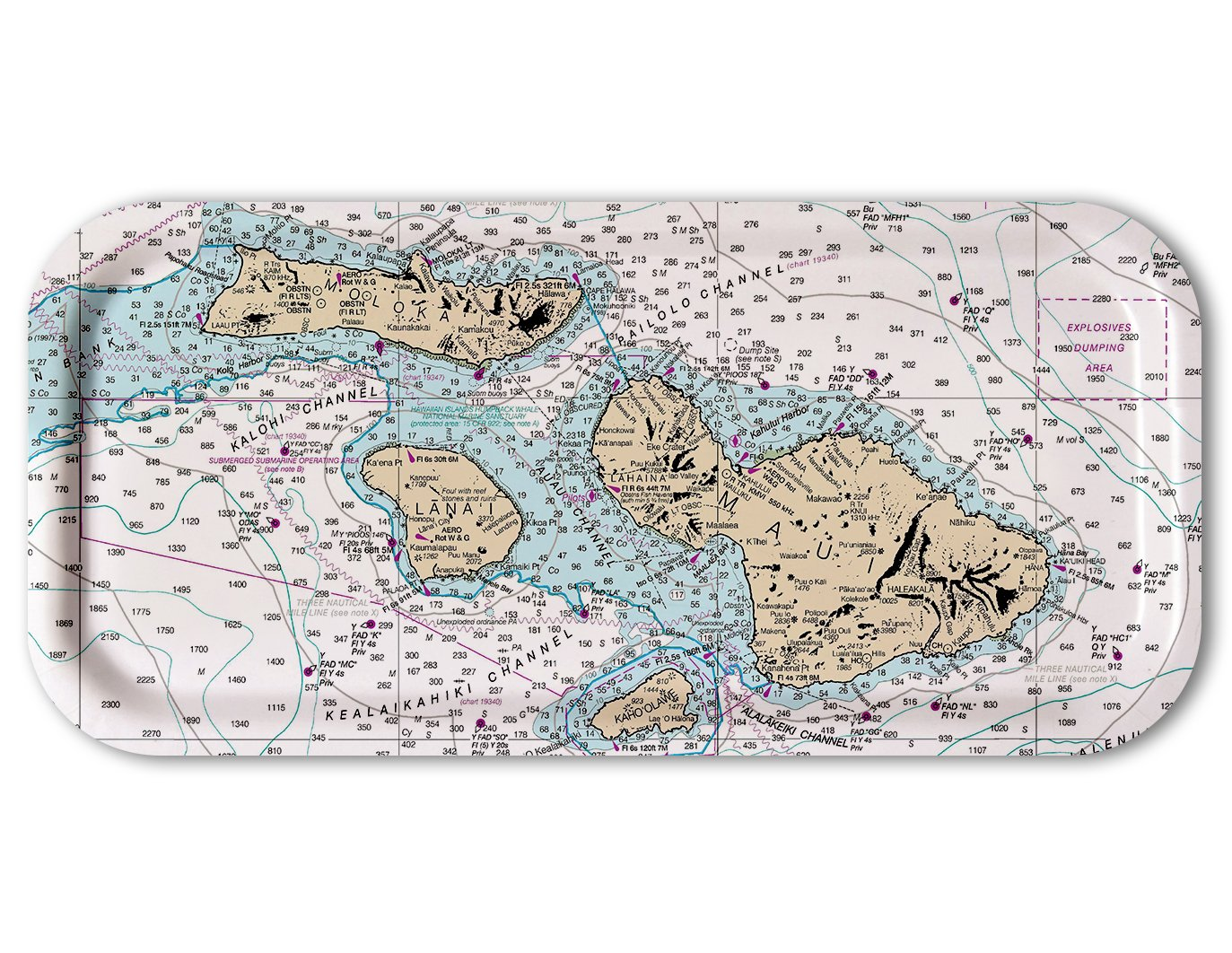 Trays4Us San Francisco Aviation Chart Birch Wood Veneer 11x5 inches (Small) Snack Map Tray - 100+ Different Designs COMINHKPR29156