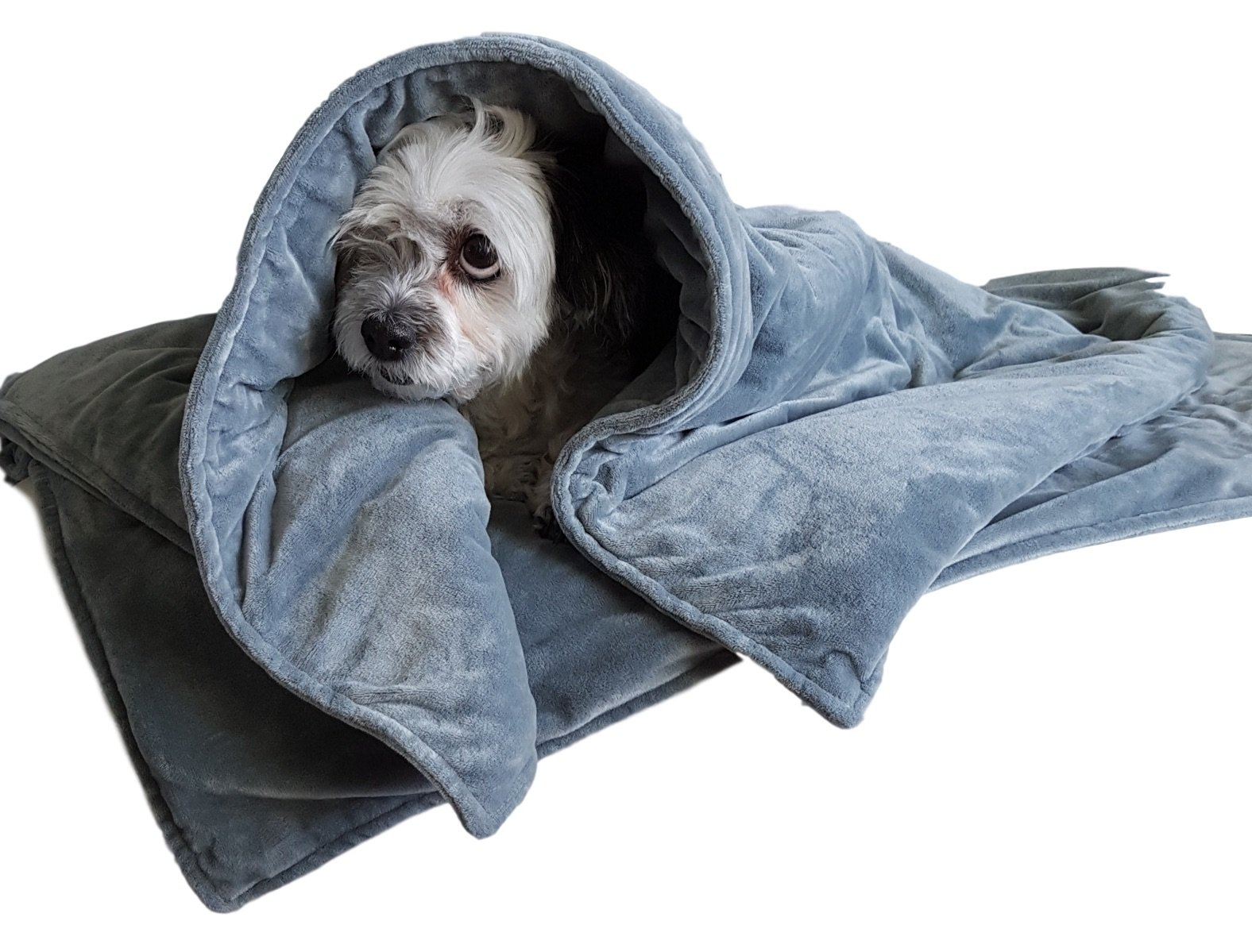 Canine Coddler Weighted Dog Anti Anxiety Blanket (Small/Med Dog 10-49 lbs)