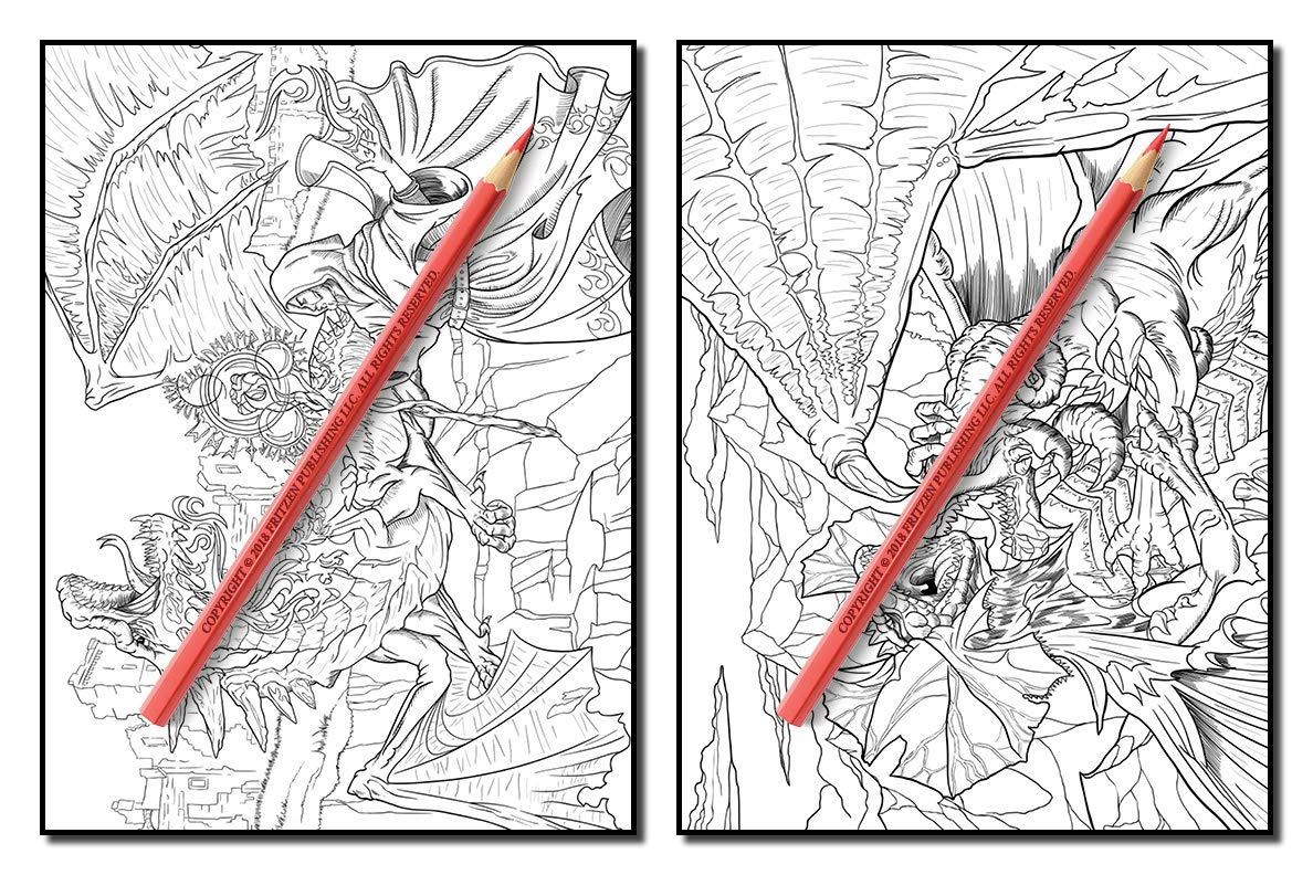 Dragons an adult coloring book with mythical fantasy creatures