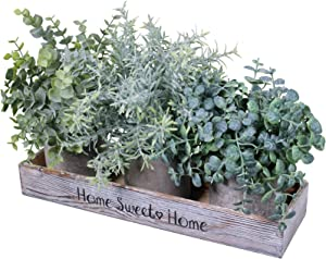 Assorted Small Potted Plants in Wood Planter Box Artificial Eucalyptus Plant and Rosemary Plant in Pots Greenery Arrangement for Rustic Farmhouse Indoor Centerpiece Desk Tabletop Window Shelf Decor