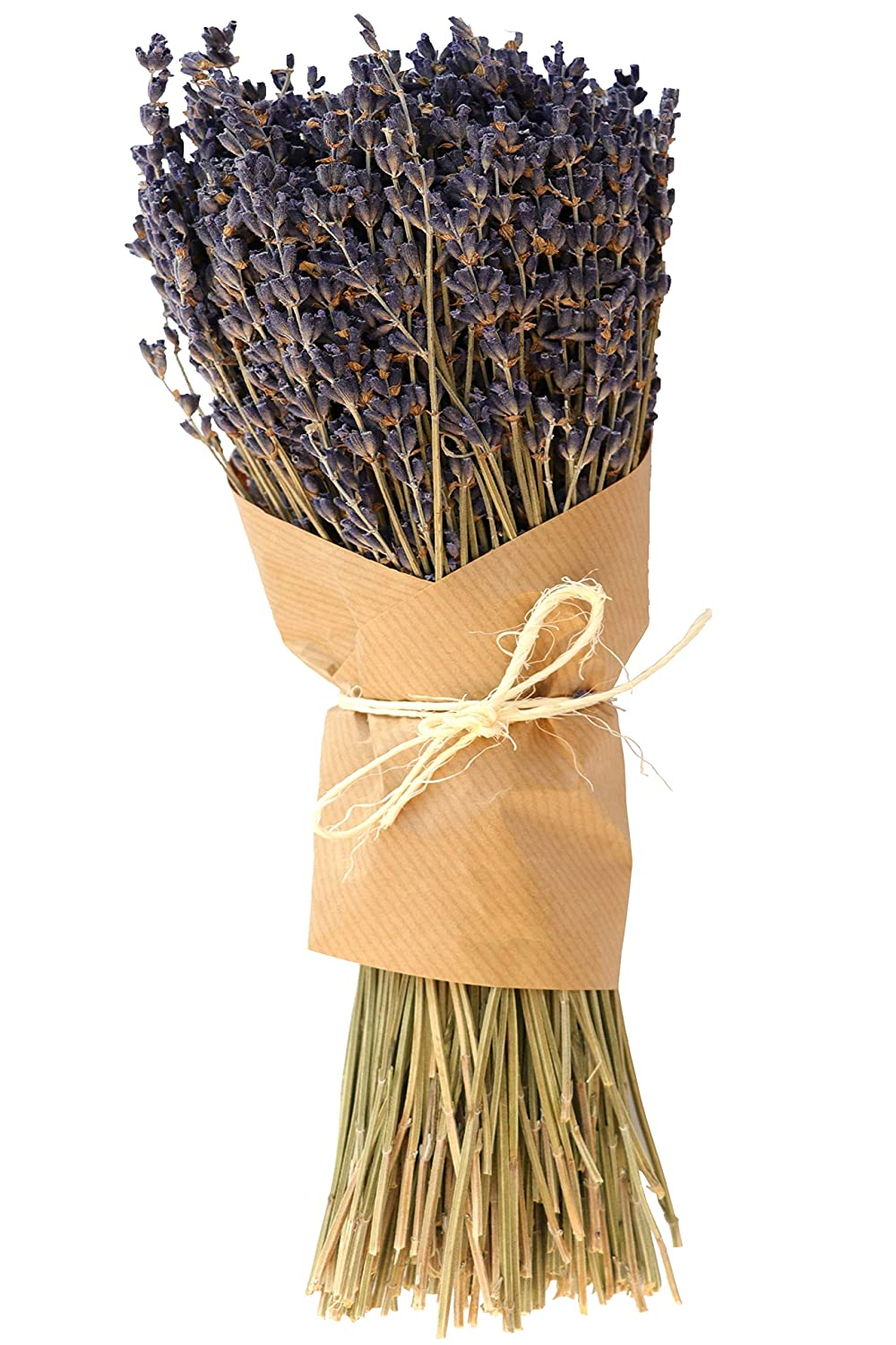 Lavender Extra Bleu Bundles - French Lavender Bundles - Wedding Decoration, House Decoration, Unique Present - 100 Percent Pure Dried Lavender The Ambient Collection