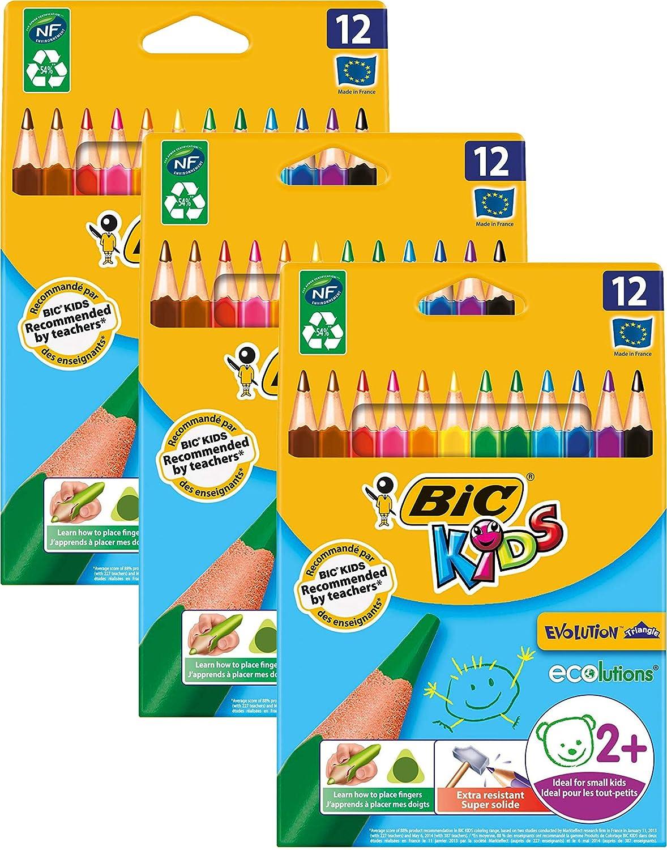 BIC Kids ECOlutions Evolution Dreikant Buntstifte Set für Kinder ab 2 Jahre – Ohne Holz, mit bruchsicherer Mine – 12 Farben in Großpackung à 144 Farbstifte B07PPPSBB8   Zu verkaufen