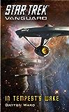 Vanguard: In Tempest's Wake (Star Trek: Vanguard Book 9)