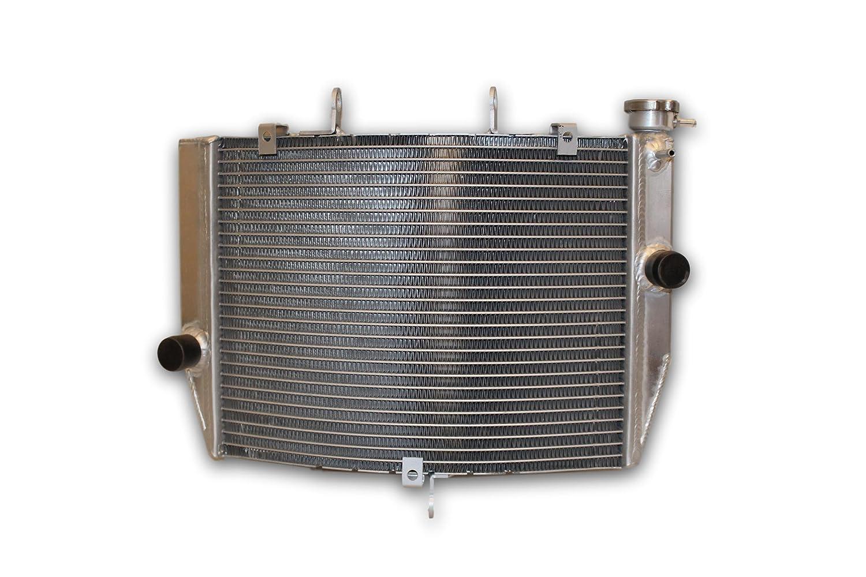 Amazon.com: OPL All Aluminum Radiator for Kawasaki Ninja ...