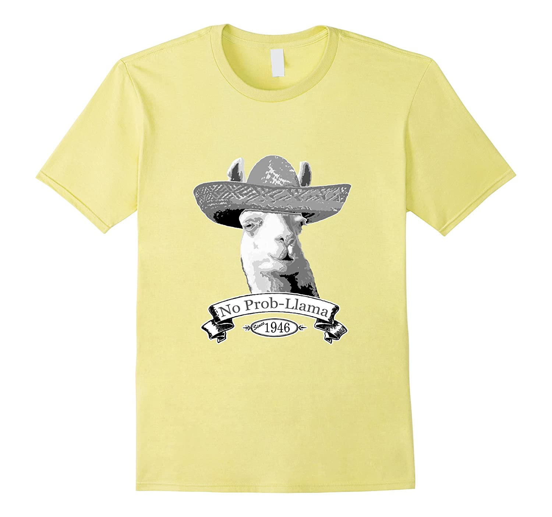 70th Birthday Gift T-Shirt - 1946 Age 70 Llama Hipster Shirt-BN