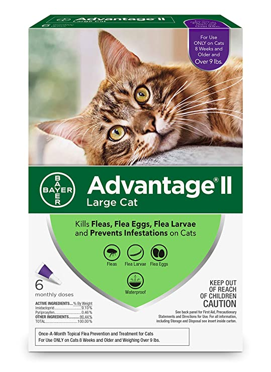 Cheapest advantage flea treatment for cats