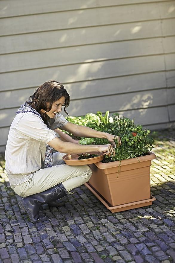 Elho Green Basics Garden XXL Saucer Plato, Living Black, 72, 2x33 ...