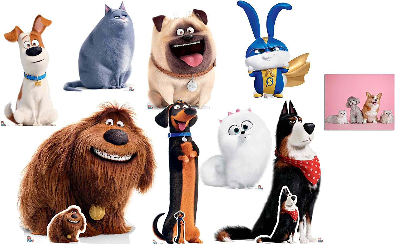 Amazon Com The Secret Life Of Pets 2 Official Cardboard Cutout Standup Collection Set Of 8 Fan Pack Includes Free Mini Cutouts For Buddy Rooster And Duke And 8x10 Photo Home Kitchen