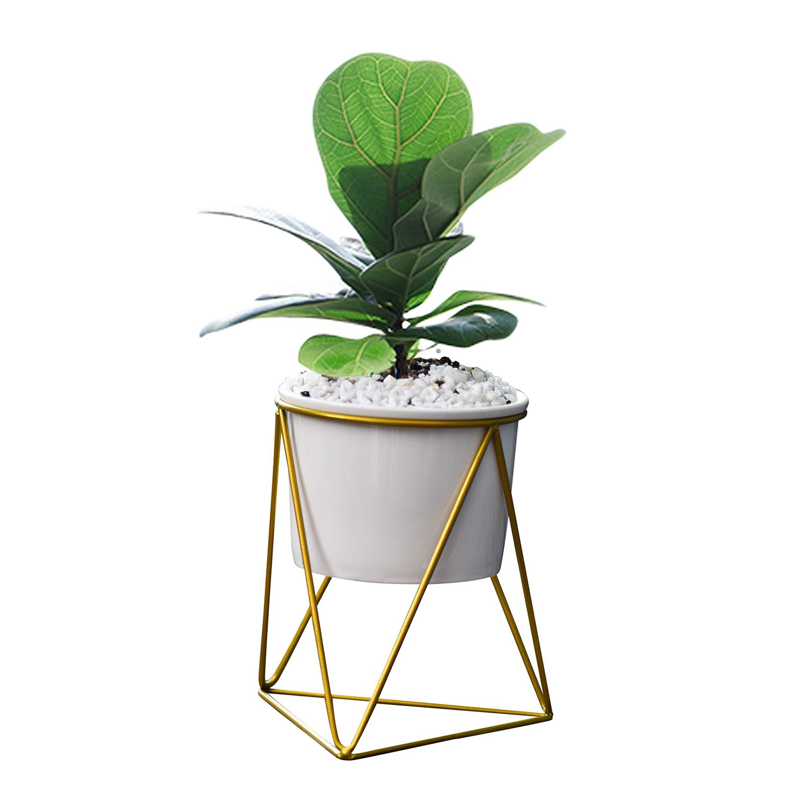 Feiren Outdoor/Indoor Planter Pots/Succulent pots/Stand for 6'' Pot House Plant White Ceramic Round Bowl with Metal Air Plant Stand for Succulent Planter -Perfect for Fig Tree Ficus(White + Gold)