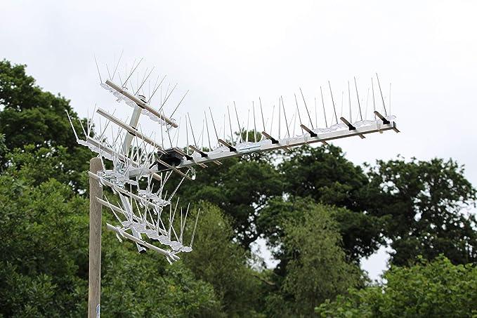 Defender Bird Spikes Defender Antena de TV | 5 Metros Paquete con Clips de Pegamento | 40 páginas de guía disuasoria de Paloma, 2