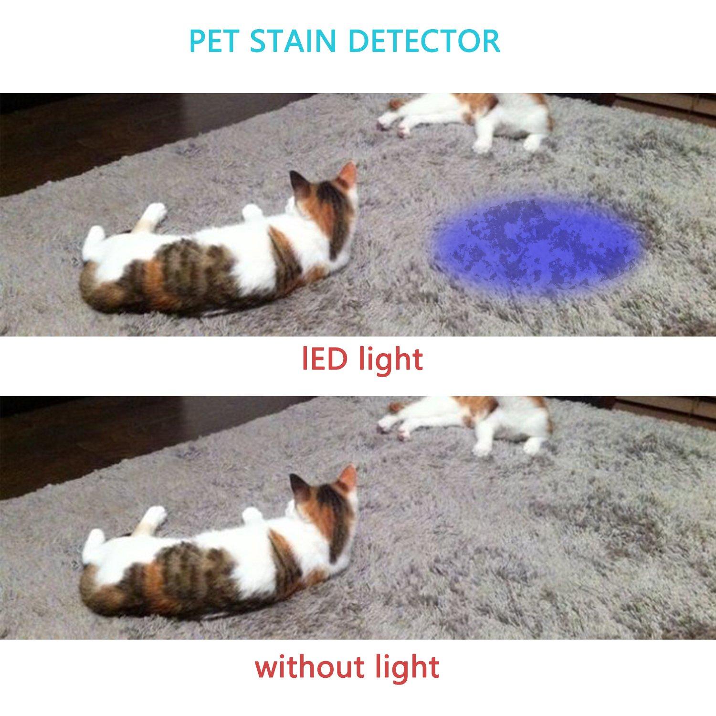 Findway 5 UV Ultra Violet Blacklight 9 LED Flashlight Torch Light Outdoors,Pet Urine Detector for Dog Urine,Pet Stains and Bed Bug Detector,Dog Urine Remover 1003-1