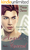 Angel:Reversed (A:R Earth 1) (Angel: Reverse Earth)
