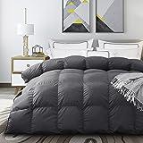 Acrafsman Goose Down Comforter Queen,1200Thread Count 100% Egyptian Cotton Fabric,Medium Warmth All Season Down Duvet Comfort