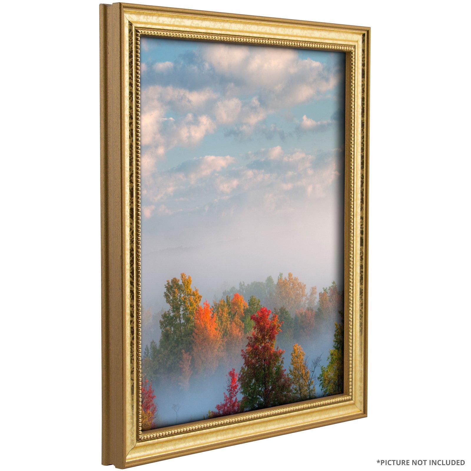 Craig Frames 314GD 24 x 36-Inch Picture Frame, Ornate Finish, 0.75-Inch Wide, Ornate Gold by Craig Frames (Image #4)