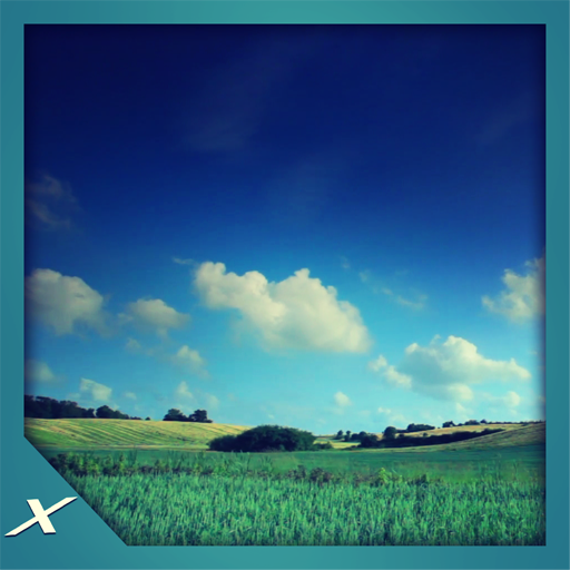 Grassy Lands - Lush Green Scenery for Your Screen
