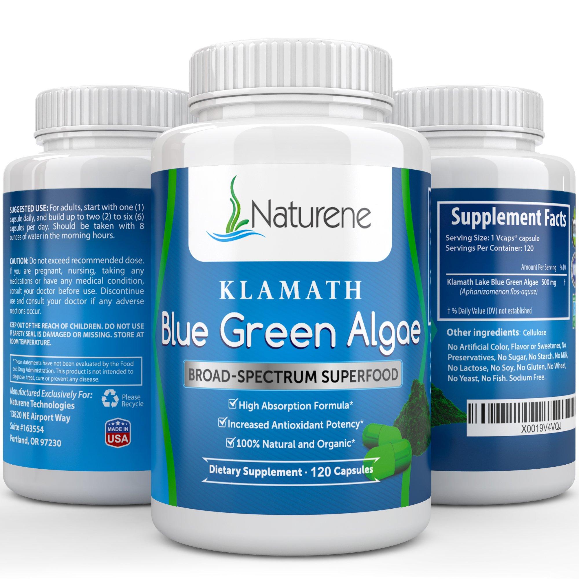 Naturene Organic Klamath Blue Green Algae, 500mg, 120 vegan capsules - Energy and Focus Superfood with More Potency Than Spirulina or Chlorella - High Absorption Formula - Certified USDA Organic