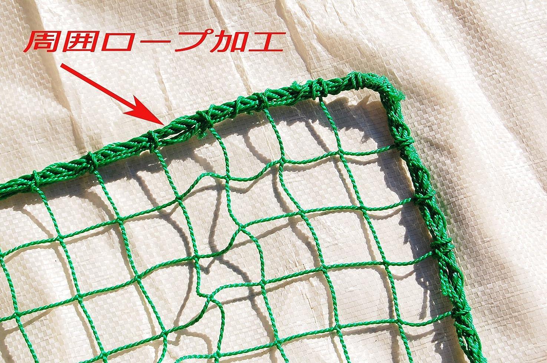 廃止する低下コートトーエイライト 防球フェンス2020