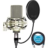 MXL 990 Cardioid Condenser Microphone for Podcasts, Voiceovers, Vocal and Acoustic Instrument Recording Bundle with Blucoil 1