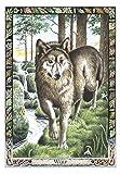 Druid Animal Oracle Deck