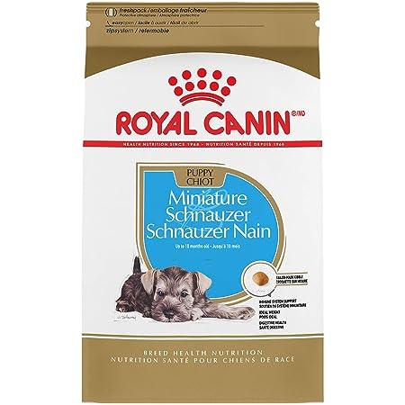 Royal Canin Breed Health Nutrition Miniature Schnauzer Puppy Dry Dog Food, 2.5-Pound