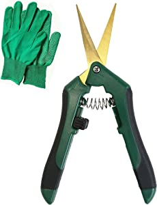 HUGHLEAF, Gardening Scissors, Hand Pruning Shears 6.5 Inch with Gloves Included, Micro-Tip, Pruning Scissors, Garden Pruners, Steel Blades, Gardening Tool, Plant Cutters, Green