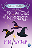 Lost Souls ParaAgency and the Three Witches of Burberry: (Romantic Paranormal Mystery)