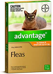 Advantage for Kittens and Small Cats up to 4kg, 1 Pack
